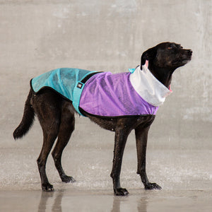 Zee Dog Bel Air Raincoat