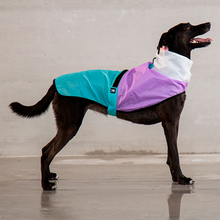 Load image into Gallery viewer, Zee Dog Bel Air Raincoat