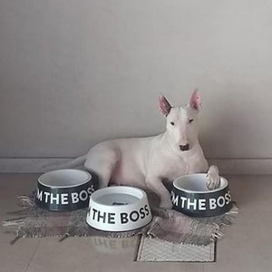 Zee Dog Black 'I'm The Boss' Dog Bowl