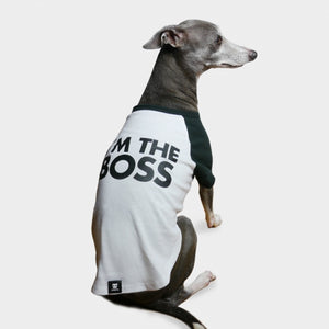 Zee Dog I'm The Boss Dog T-Shirt
