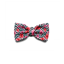 Load image into Gallery viewer, Zee Dog Mahalo Large Bow Tie