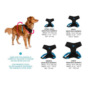 Zee Dog Memphis Mesh Harness