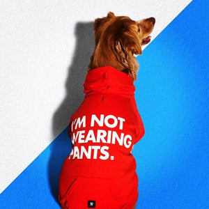 Zee Dog I'm Not Wearing Pants Red Hoodie