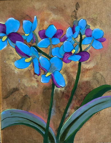 Blue Orchids, an artistic tribute to phalaenopsis