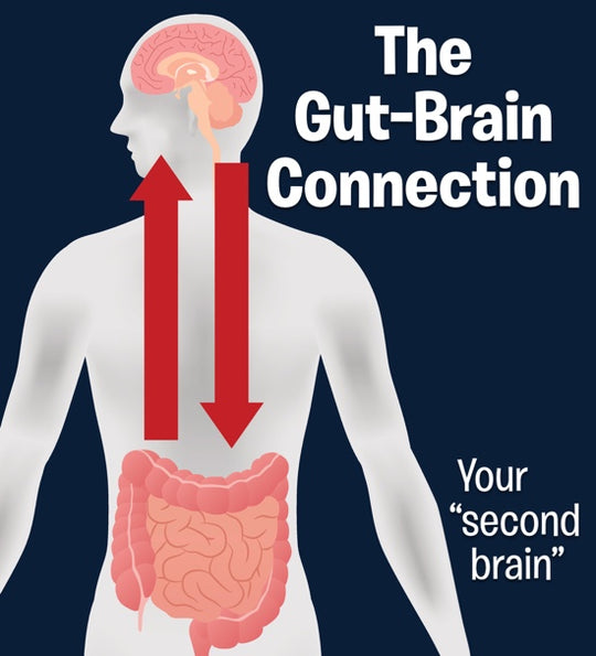 New Clinical Research shows that Probiotics may help in the fight against depression.