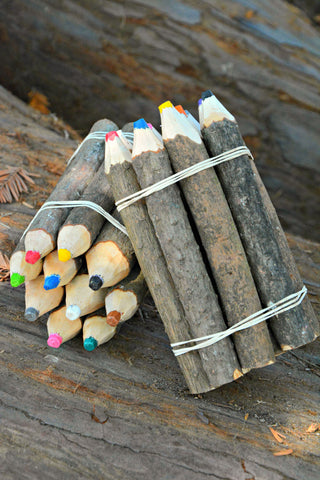 Pine Tree Branch Crayons