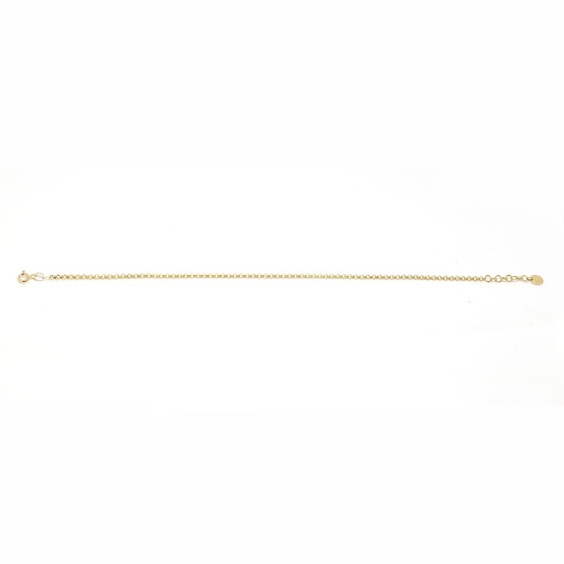 Simple Chain Anklet