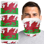 Wales Flag Snood Face Mask - Purple Print House