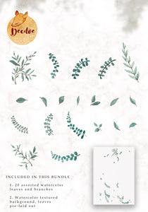 Watercolor Leaves Bundle