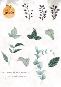 Watercolor Leaves Bundle 2