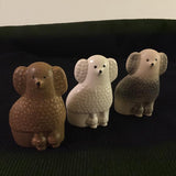 Minikennel Pudlar - Mini Poodles