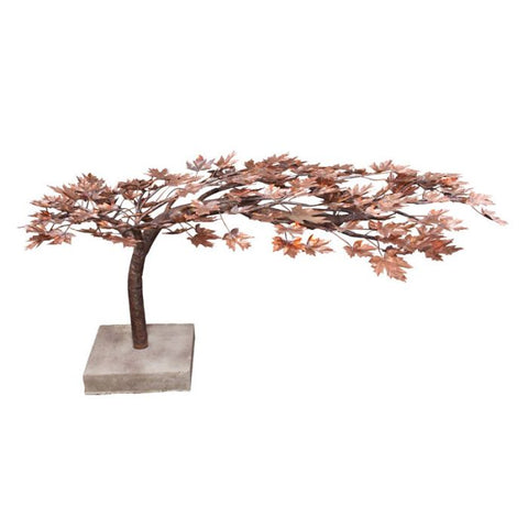 Image of Blue Thumb Creeping Japanese Maple- Complete Kit ABCF500 - ProYardSupply