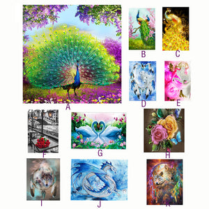 5D Embroidery Paintings Rhinestone  Diamond painting Cross Stitch