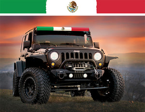 Mexican Flag Insert