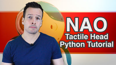 NAO Tactile Head Python Tutorial