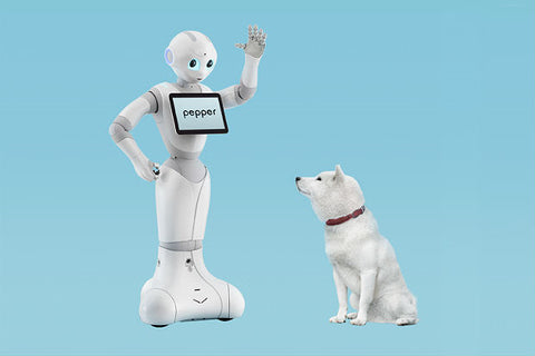 Pepper Robot Center