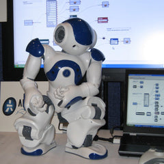 Nao Robot Software Suite License Pack of 5