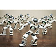 Webots for Nao License