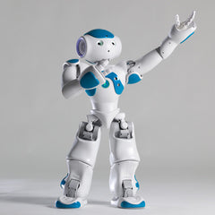 Nao Robot Software Suite Site License