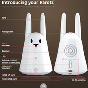 Karotz Rabbit Robot