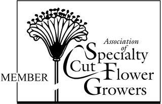 Hickory View Flowers: Association of Specialty Cut Flower Growers