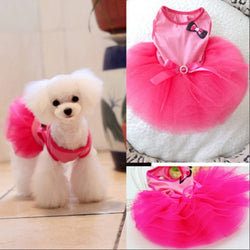 Pet Bow Bubble Pink Dress