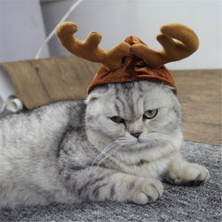 Elk Hat Pet Costume