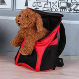 Head Out Mesh Pet Backpack
