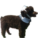 Navy Sailor Suit Pet Costume