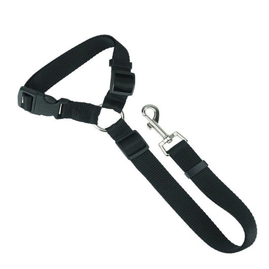 Nylon Dog Leash with Handle