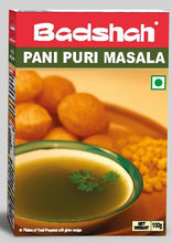 Load image into Gallery viewer, Badshah Pani Puri Masala 100g