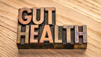 What Is Your Gut Telling You?