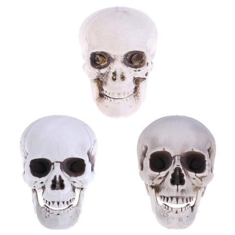 Halloween Decoration Artificial Human Skull Head Model Plastic