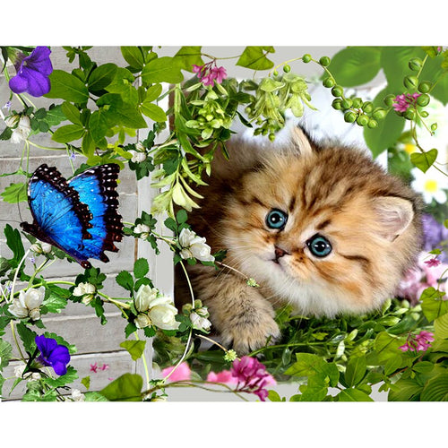 Cat and Butterfly with Nature