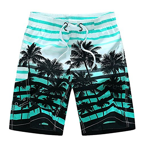 Newland Men's Colorful Stripe Coconut Tree Beach Shorts Swim Trunks