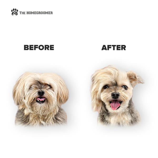 The HOMEGROOMER™: Professional Pet Grooming Kit