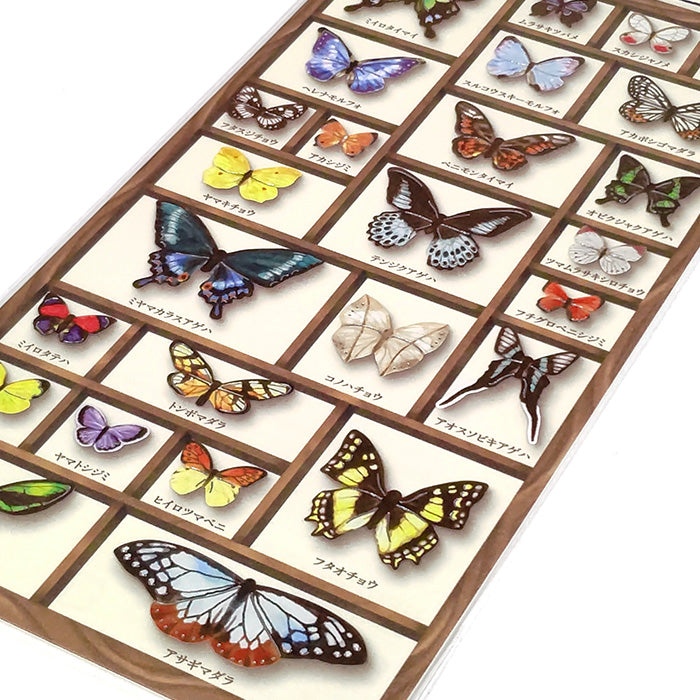 Specimen Box Stickers - Butterflies