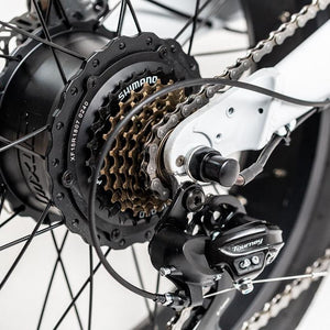 Uni Maxi Folding Electric Fat Wheel Bicycle Fatbike Foldbike 20 x 4.0 Urban E-Bike Electric Vehicle Gearing Freehub
