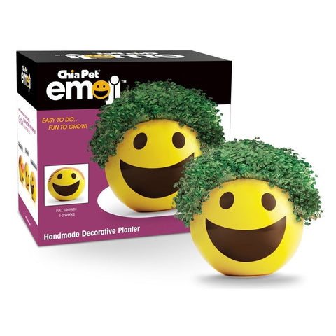 Image of Emoji Chia Pet