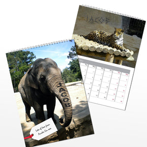 Personalised Zoo Animals A4 Wall Calendar