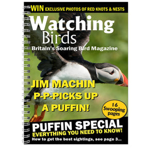 Personalised Watching Birds A5 Diary