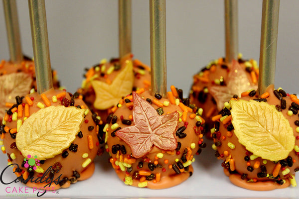 Thanksgiving / Fall Favor Cake Pops - Pumpkin Spice or Chocolate