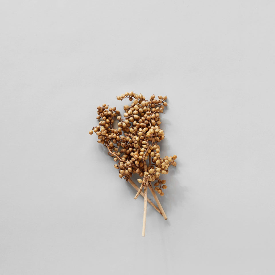 Dried Natural Canella