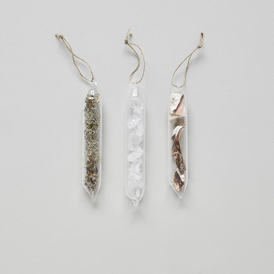 Encapsulated Nature Ornaments
