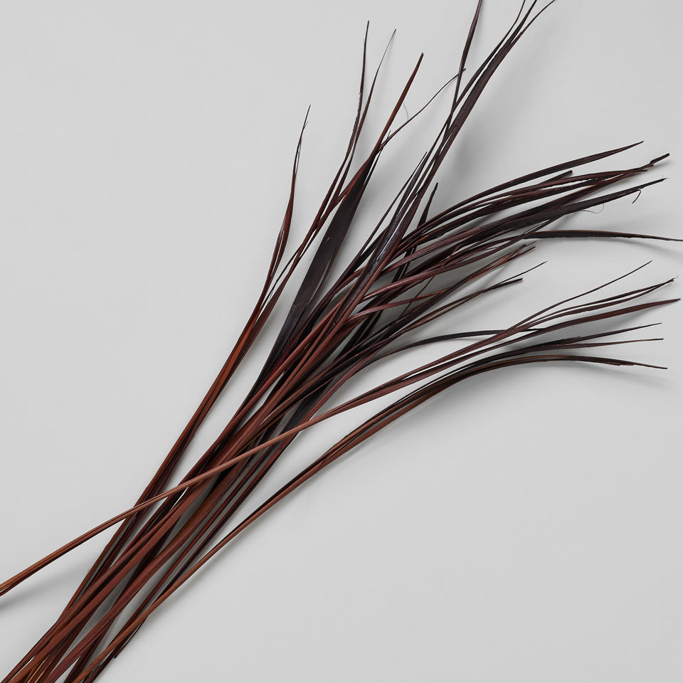 Dried Splinter Grass