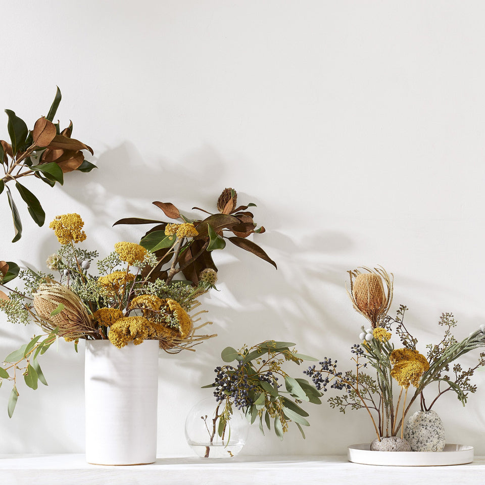 Set of Three Dried Natural Banksia