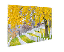 Load image into Gallery viewer, Metal Panel Print, Arlington National Cemetery Near To Washington Dc In Autumn