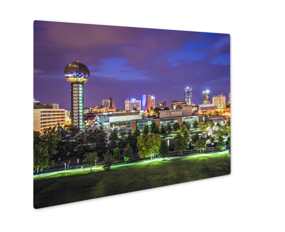 Metal Panel Print, Knoxville Tennessee