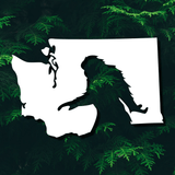 Bigfoot In Washington State Vinyl Decal