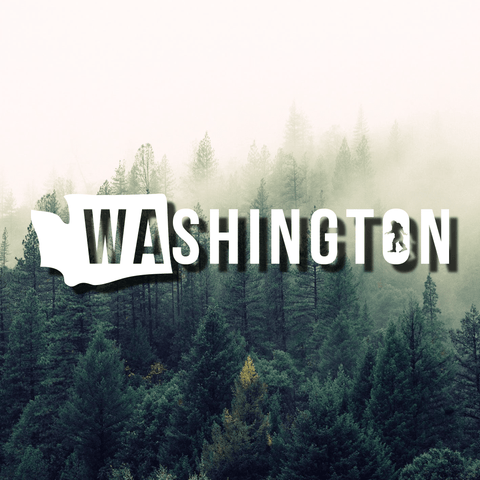 Washington + Sasquatch Die Cut Vinyl Decal, Bigfoot Decal, Sasquatch Decal, Washington Decal, Laptop Decal, Car Decal, Water Bottle Decal - Dukes Decals